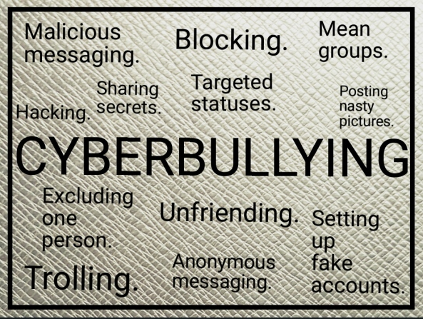 Cyberbullying in schools
