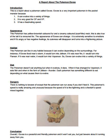 Pokemon report lesson